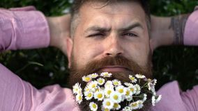 Close up of handsome smiling man with flowers in his beard resting on the grass. Man with flowers in his beard lays on stock video footage