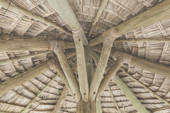 Close-up of hanging edge of thatched umbrellas on beach Stock Photos