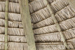 Close-up of hanging edge of thatched umbrellas on beach Stock Photography