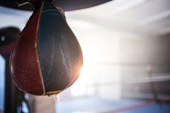 Close-up of hanging leather punching bag Stock Images
