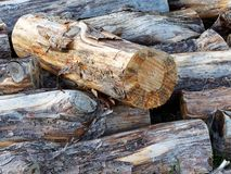 Close Up of Haphazardly Stacked Pile of Wood stock photo