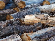 Close Up of Haphazardly Stacked Pile of Wooden logs stock photography