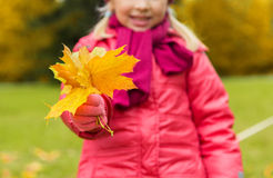 Close up of happy girl with autumnn maple leaves Stock Photo