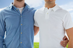 Close up of happy male gay couple hugging Royalty Free Stock Image