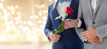 Close up of happy married male gay couple royalty free stock image