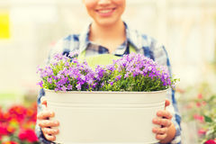 Close up of happy woman holding flowers in pot Royalty Free Stock Images