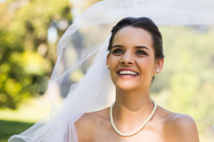 Close-up of a happy young beautiful bride Stock Image