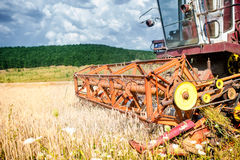 Close-up of harvesting combine in wheat crops Stock Photo