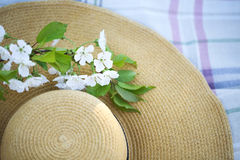 Close up of a hat with cherry blossom tree Royalty Free Stock Images
