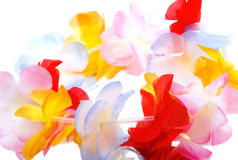 Close-up Hawaiian lei flowers on white. Close-up colorful Hawaiian lei with bright flowers on white background royalty free stock images