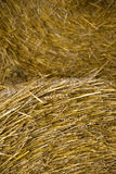 Close up of hay bale. Close up of hay in a hay bale Stock Photo