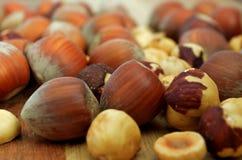 Close up of hazelnuts. Close-up of hazelnuts on wood Stock Image