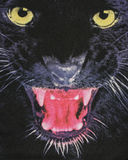 Close up on the head of a black panther on fabric. Royalty Free Stock Photography