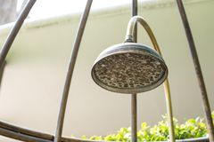 Close up head of vintage bronze rain shower. On outdoor stock image