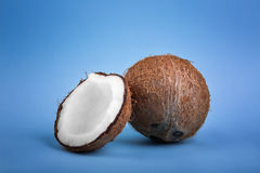 Close-up of healthful coconuts, on a light blue background. Hawaiian, whole and cut in a half coconuts. Nutritious exotic nuts. Stock Images