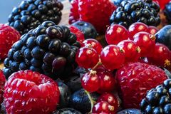 A close up of healthy colorful berries royalty free stock images