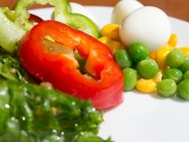 Close up of healthy fresh vegetable salad. colorful vegetable salad. Yellow corn, Green beans, Red tomatoes and Bell pepper, Quail stock photo