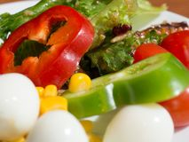 Close up of healthy fresh vegetable salad. colorful vegetable salad. Yellow corn, Green beans, Red tomatoes and Bell pepper, Quail stock images