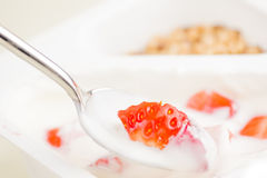 Close-up of healthy strawberry and white yogurt on the spoon Stock Image