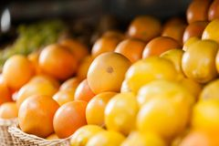 Close up of heap of oranges and lemons Stock Image