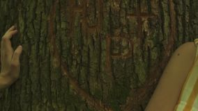 Close-up of a heart carved on a tree and hands of young loving couple. Green forest background.  stock video