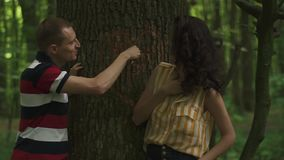 Close-up of a heart carved on a tree by young couple in love. Green spring forest background.  stock video footage