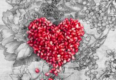 Heart made of pomegranate Stock Images