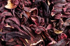Close up , Hibiscus sabdariffa or roselle fruits as background. Top view stock photo