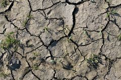 Close up high resolution surface of ground and acre. In northern germany stock photo