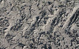 Close up high resolution surface of ground and acre. In northern germany royalty free stock images