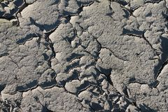 Close up high resolution surface of ground and acre. In northern germany stock image