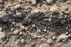 Close up high resolution surface of ground and acre. In northern germany royalty free stock photos