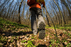 Close up of hiker shoes boots and hiking sticks poles Royalty Free Stock Image