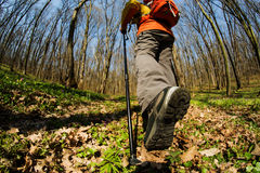 Close up of hiker shoes boots and hiking sticks poles Royalty Free Stock Photography