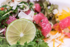 Close up of home made tuna and salmon savory fresh salad. With lime Royalty Free Stock Image