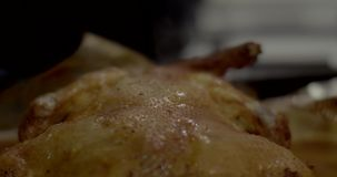 Close up of Home roasted chicken / turkey just out of the oven. Close up of Home roasted chicken turkey just out of the oven 4K stock video footage