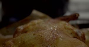 Close up of Home roasted chicken / turkey just out of the oven. Close up of Home roasted chicken turkey just out of the oven 4K stock video