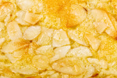Close up homemade almond cookie  on white Royalty Free Stock Photography