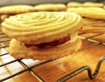 Close-up of homemade Viennese whirl stock photography