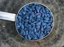 Close up of honeyberry in old ladle Royalty Free Stock Image