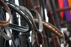 Close up of horse bridles in shop Stock Photo