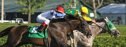 Close Up Horse Race Stock Photos