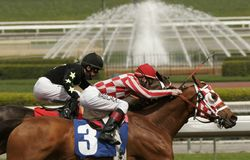 Close-Up of Horse Race with Fountain. Jockey Tyler Baze wins a claiming race aboard Plan For Fun, a 5-year-old gelding, at Santa Anita Park, Arcadia, California royalty free stock photo