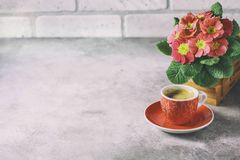 Close-up of hot coffee, moka-pot and flowers. Stock Photo