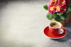 Close-up of hot coffee, moka-pot and flowers. Stock Images