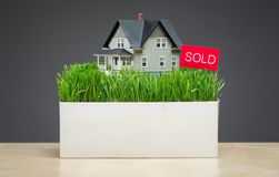 Close up of house model with grass and sold tablet. Close up of house model with green grass and sold tablet on grey background. Concept of real estate and sales Stock Image
