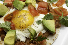 Close up of Huevos Rancheros Royalty Free Stock Photo