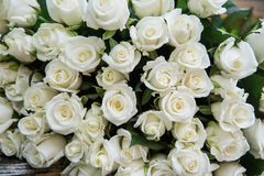 close-up of a huge bouquet of white roses royalty free stock photography