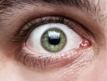 Close up of human eye Stock Image