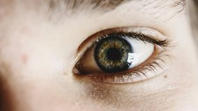 Close up of human eye Stock Images